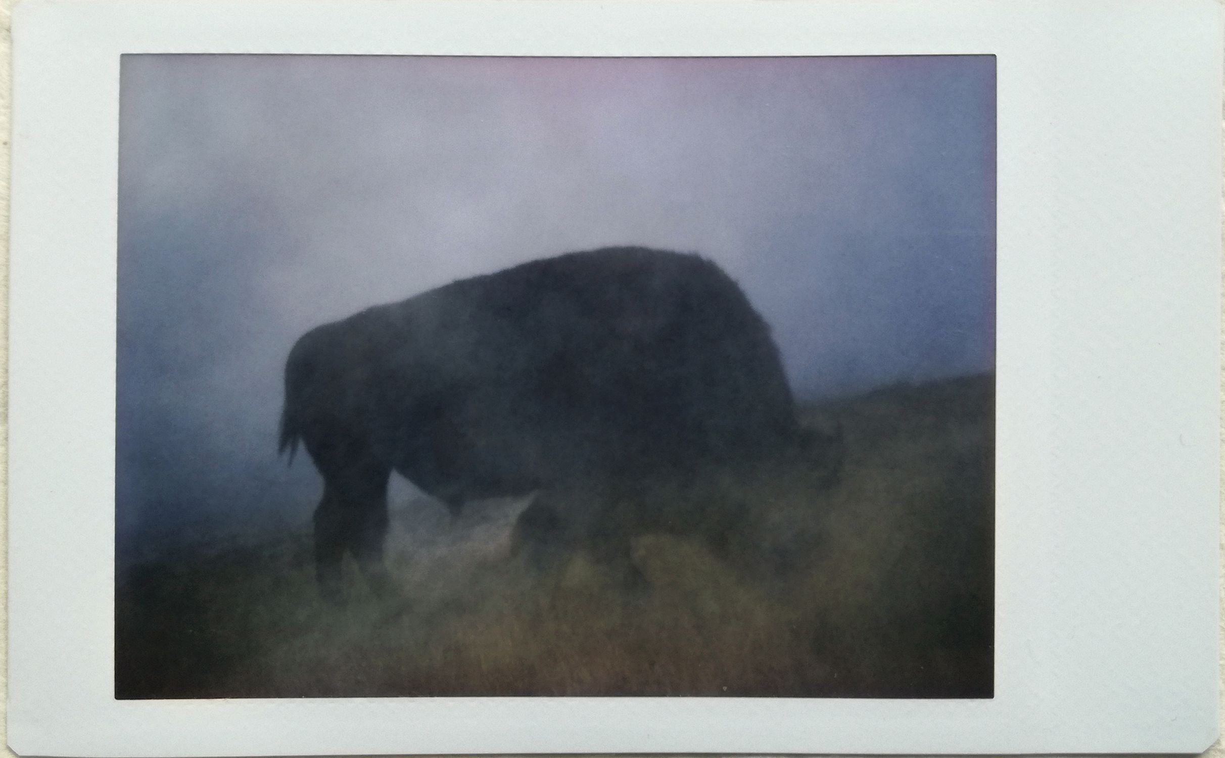 Kimdary_yin_Polaroid_Podcast_travel_utah_wyoming_USA